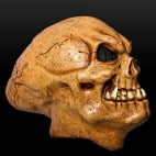 Eine Maske wie diese kann man tragen oder als Teil der Dekoration nutzen   Quelle: © maskworld.com