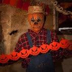 Halloween kann kommen mit der passenden Deko