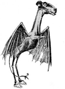 Jersey Devil, Zeichnung aus Philadelphia Evening Bulletin, 1909