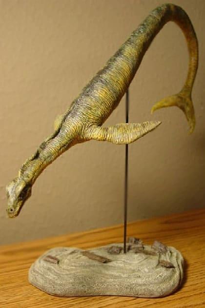 Cadbororsausrus
