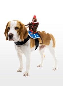 Dog Rider Affe