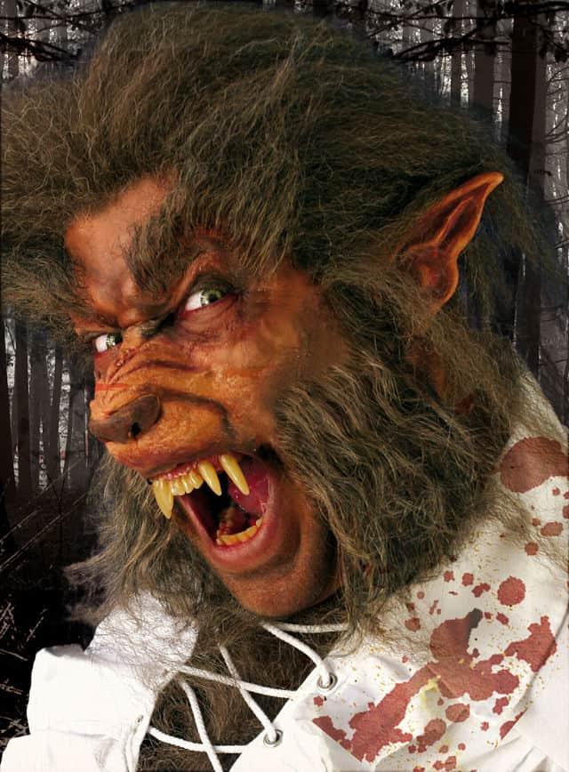 werwolf alles ber werwolf mythos wirklichkeit. Black Bedroom Furniture Sets. Home Design Ideas