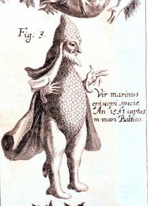 Abbildung eines Meermannes von Johann Zahn, 1696 | Quelle: Wikipedia