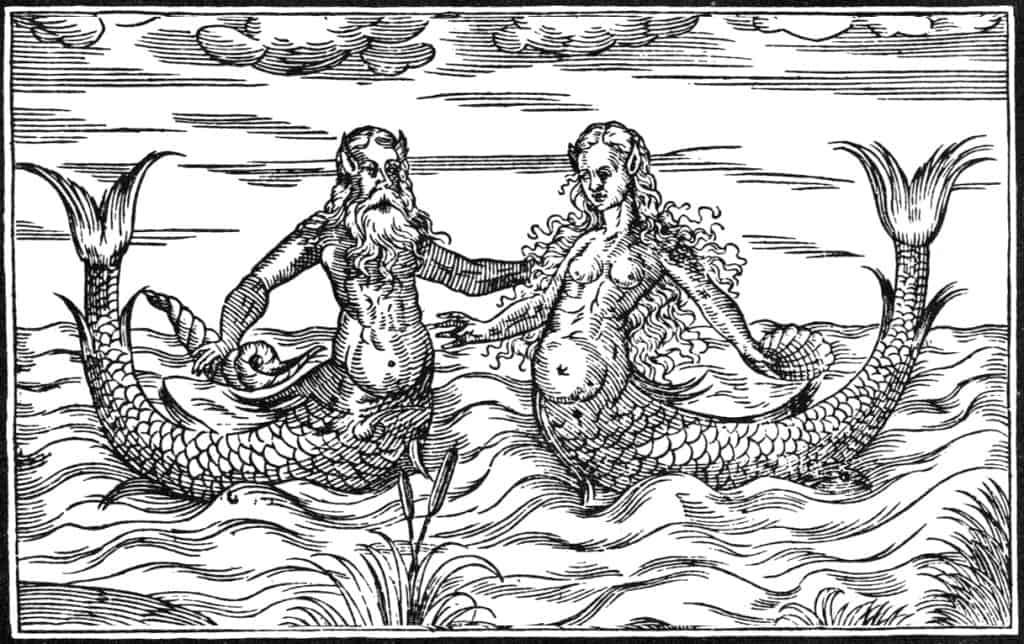 Meermann-und-Meerfrau - Wie vermehren sich Meerjungfrauen